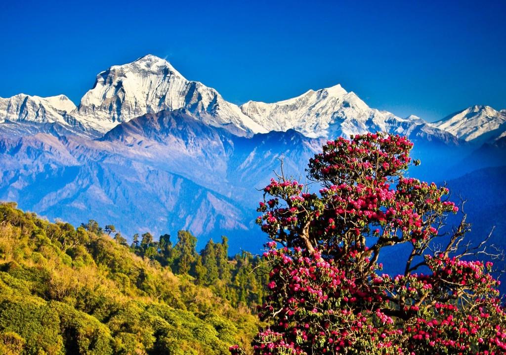 nepal & everest