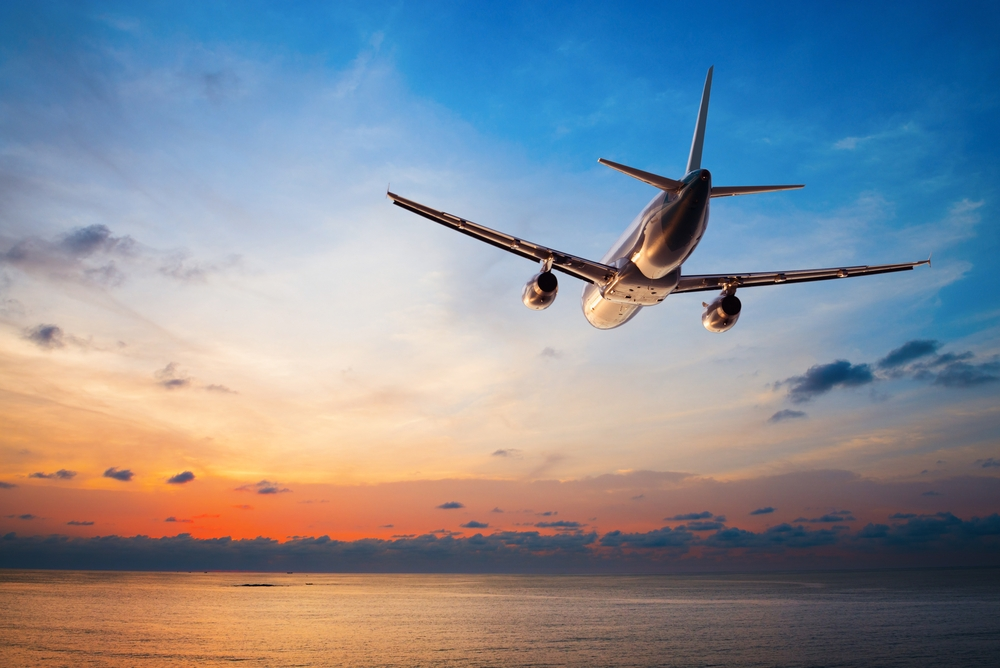 tips for surviving a flight